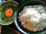 地鶏の京都:卵とごはん