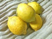 chmさんから頂いた犀川産レモン