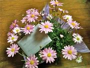上村さんから頂いたお花